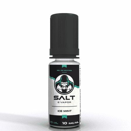 Ice Mint Salt E Vapor